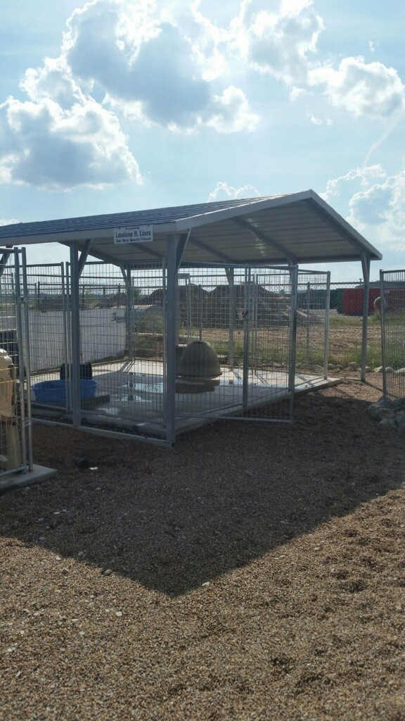 This is one of the outdoor pens.